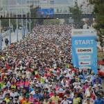 横浜マラソン2016のコースを攻略!高速道路が辛いかも!