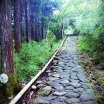 箱根駅伝2017の予選会を予想!神奈川大学が強い!